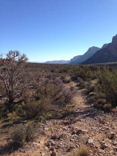 white rock trail system red rock canyon las vegas